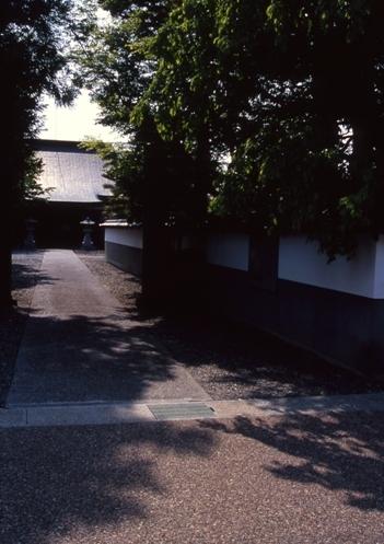 FWmatsushiroRG030(1).jpg